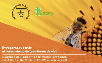 EcoEvangelio: Domingo de Ramos