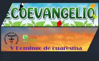 EcoEvangelio: V Domingo de cuaresma